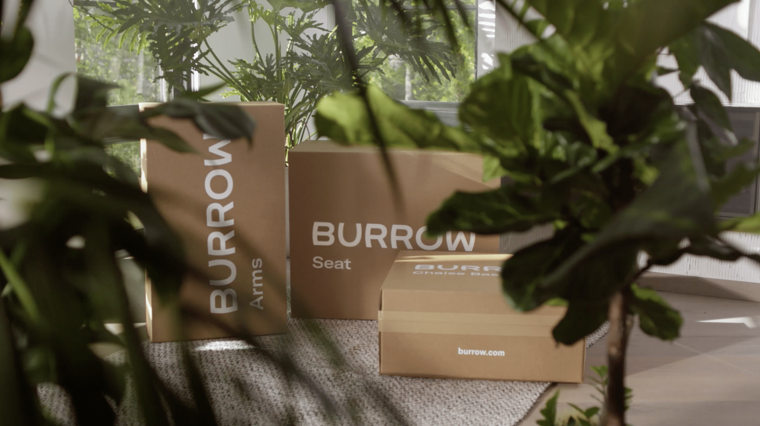 burrow-poster